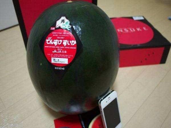 4 loại quả đắt đỏ nhất trên thế giới