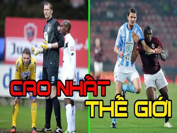 Top 5 cầu thủ cao nhất thế giới cầu thủ cao nhất thế giới