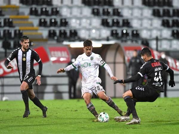 Nhận định trận đấu Farense vs Guimaraes (2h30 ngày 7/5)