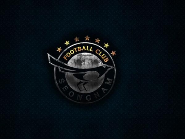 Câu lạc bộ bóng đá Seongnam FC – Lịch sử, thành tích của CLB